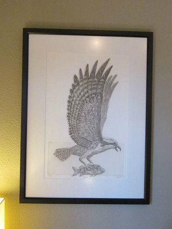 Brewery Gulch Inn: Osprey pen and ink drawing