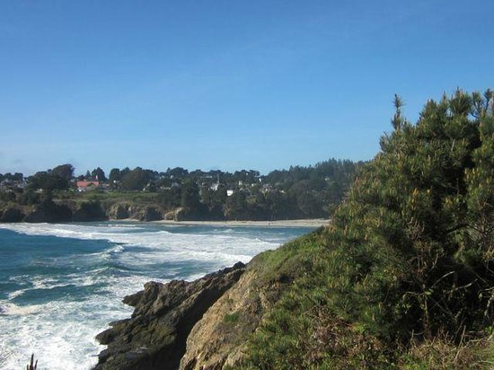 Brewery Gulch Inn : View of Mendocino from across the street