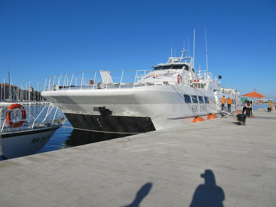 Venezia Lines High Speed Ferry International Transport: the ferry