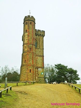 Tanhouse at Leith Hill Tower