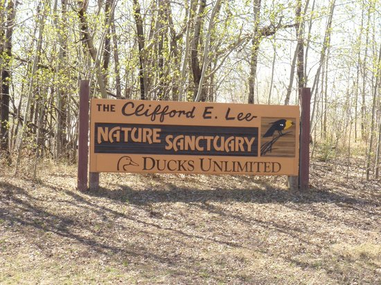 Clifford E. Lee Nature Sanctuary
