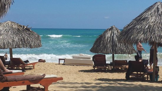 Excellence Punta Cana Relaxing Club Beach Area