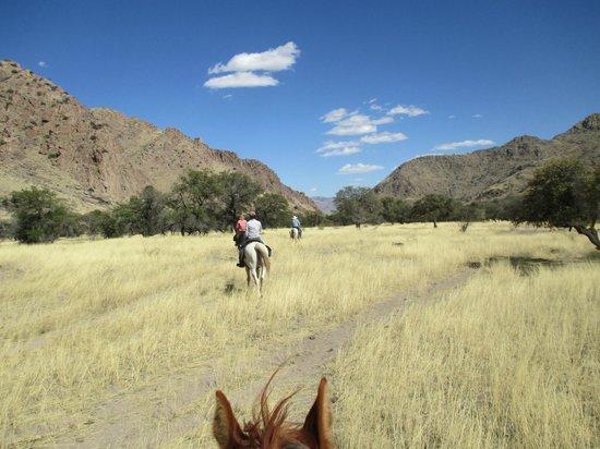 Hideout Ranch: Open terrain by horseback.