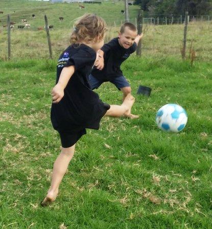 A Kiwi Farmstay: Old school fun