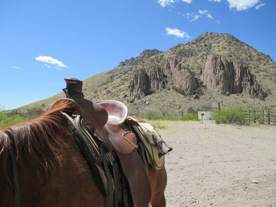 Hideout Ranch: Incredible riding just across the road.