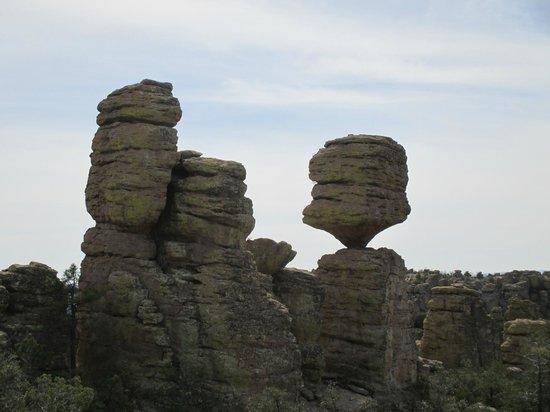 Hideout Ranch: A delicate balance.