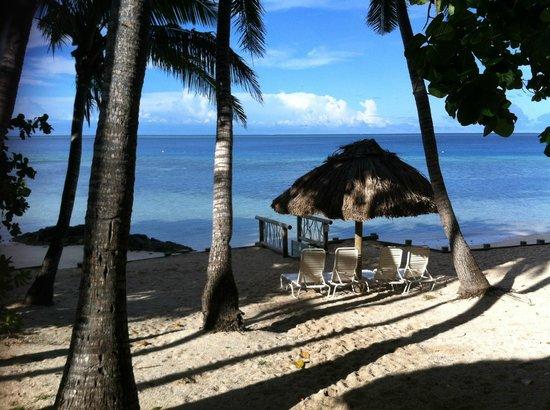 Castaway Island Fiji : View from bure 59