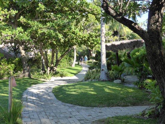 Castaway Island Fiji : Island path