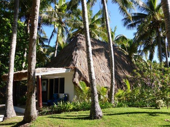 Castaway Island Fiji: Bure 59