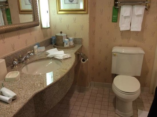 Hampton Inn Buffalo-Williamsville : Bath