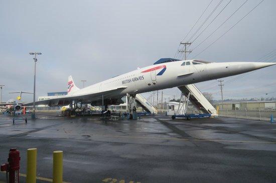 The Museum of Flight : Concorde