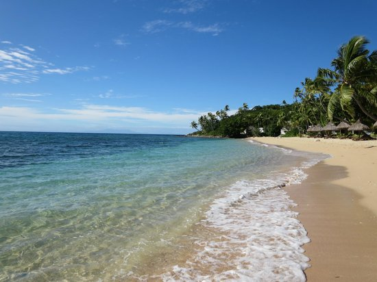 Paradise Cove Resort : early morning beach