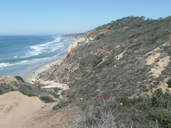 Torrey Pines State Natural Reserve: Pretty views from Torrey Pines
