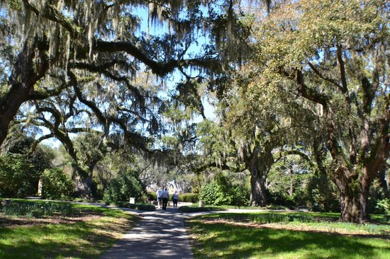 Brookgreen Gardens: areas to just stroll along