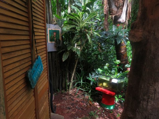 Hedonisia Hawaii Sustainable Community: Entrance to outdoor bathroom