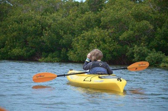 Almost Heaven Kayak Adventures : beautiful area to kayak