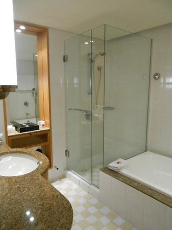 Rendezvous Hotel Auckland: Shower