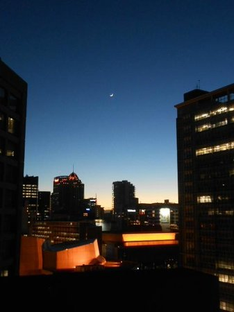 Grand Millennium Auckland: view pre dawn