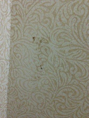 The Watson Hotel : Poop on wall! Yuck!