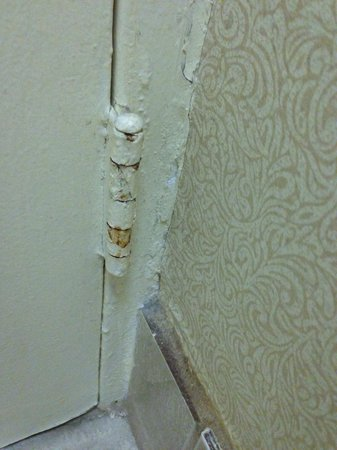 The Watson Hotel : Tetanus waiting to happen. My toddler scratched her leg.