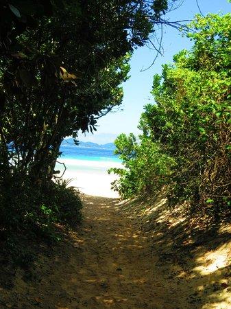 Lopes Mendes Beach: entrada a lopes mendes
