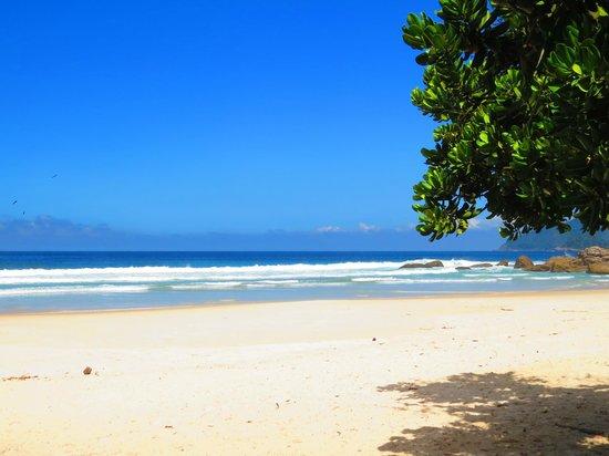 Lopes Mendes Beach: Vista de lopes mendes