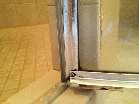 WorldQuest Orlando Resort : Mold/Mildew on doors and walls