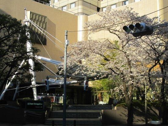 Hotel Metropolitan Tokyo Ikebukuro : Sakura at Hotel Metropolitan Tokyo