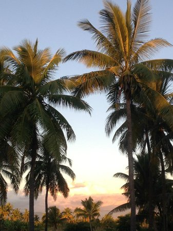 Wyndham Resort Denarau Island: view towards golf course