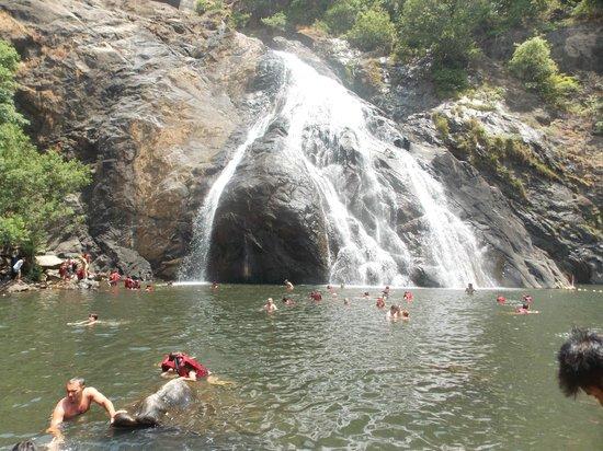 Calangute Grande: Doodh Sagar, Waterfall