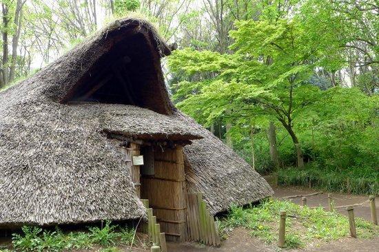 Tokyo Buried Cultural Assets Center