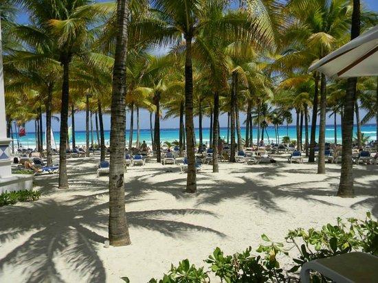 """Hotel Riu Palace Riviera Maya: Private RIU Palace Beach """"View From Pool Deck"""". BEAUTIFUL!!!"""