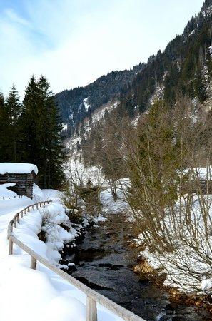 Hoteldorf Grüner Baum: Отличное место для пеших прогулок
