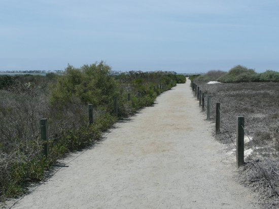Living Coast Discovery Center: Trail to the bay