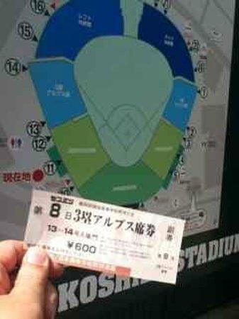 Hanshin Koshien Stadium: 春の高校野球