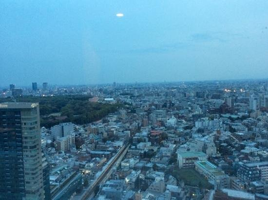 Hotel Century Southern Tower: view from our room on the 26th floor looking towards Meiji shrine