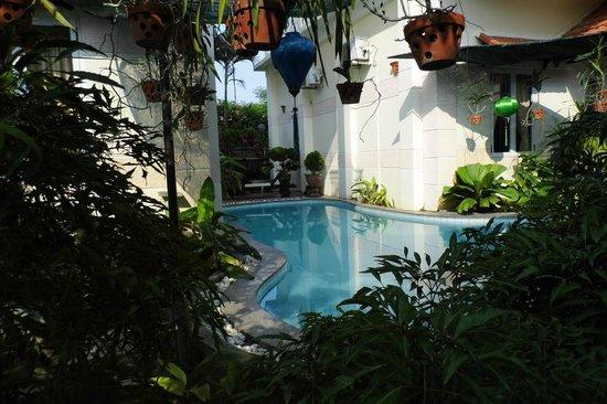 Botanic Garden Homestay: La piscine