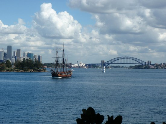 Life's An Adventure - Day Tours : View from Strickland House to the Opera House & Bridge