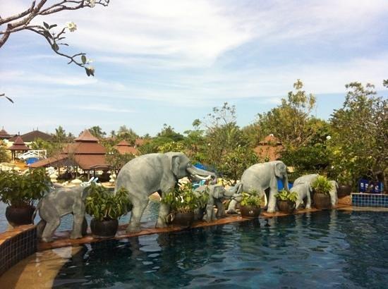 Centara Seaview Resort Khao Lak: elefants from hotel pool...