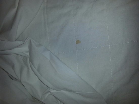 Movenpick Resort & Spa El Gouna : Blood on supposed clean sheets