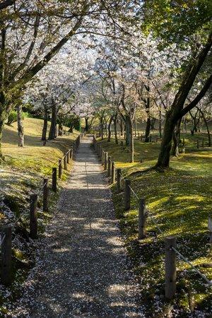 Suizenji Jojuen Garden : Suizenji koen