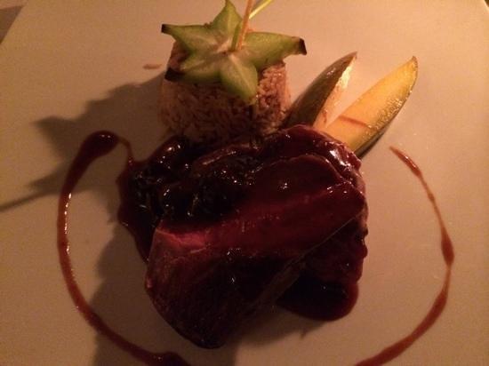 Ambrosia Restaurant: duck at Ambrosia