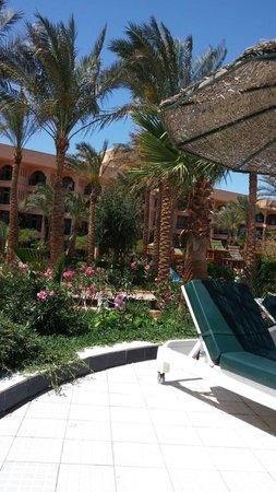Giftun Azur Resort: T gebouw