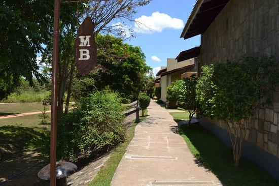 Elephant Corridor Hotel : walkway to room