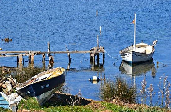 Cap de Cavalleria: Barcas en la bahia cercana