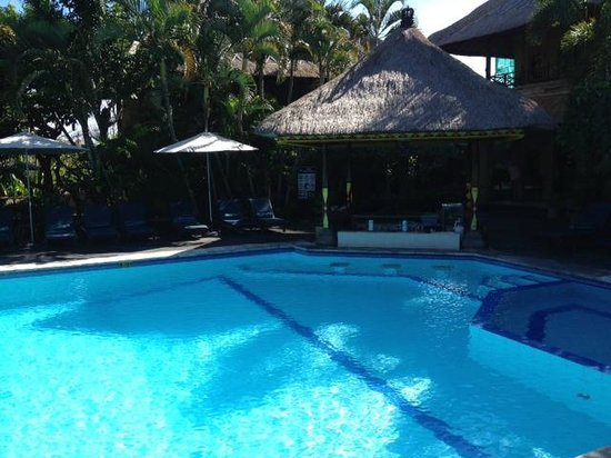 Bali Agung Village: Pool