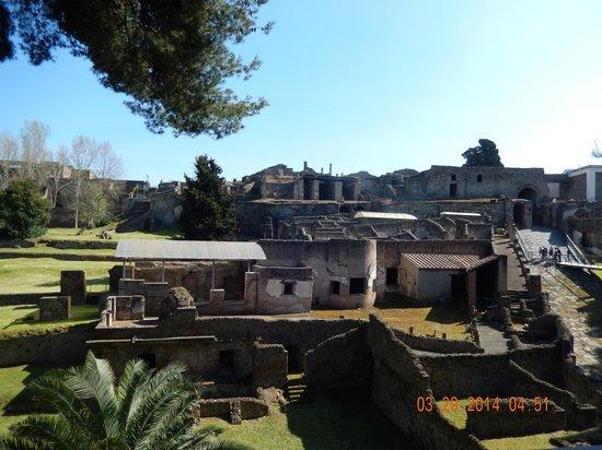 Private Day Tours: Pompeii