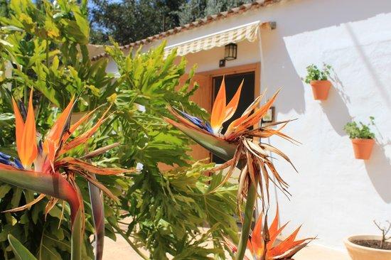 Llar La Morena: terraza doble
