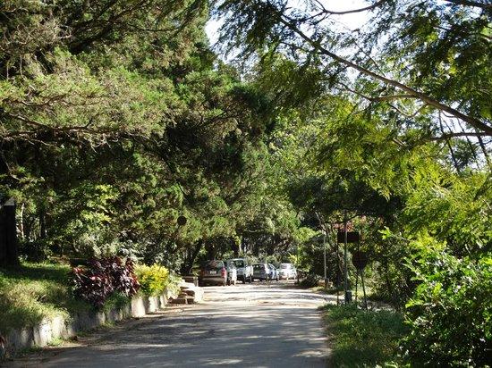 Nandi Hills: Way to parking