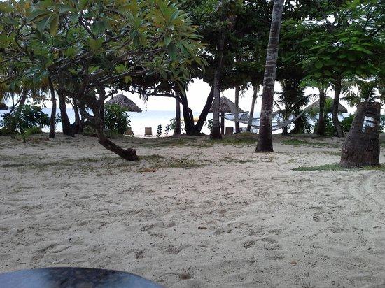 Treasure Island Resort : beach